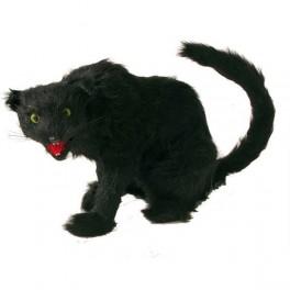 Kočka černá 6 290813 - Ru
