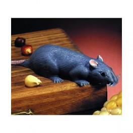 Myš malá 6 1815 - Ru