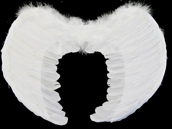 Křídla bílá péřová 1316-Li
